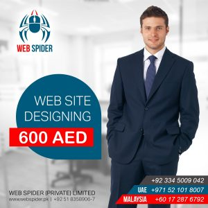 Now Get Business Website Design Only At AED 600